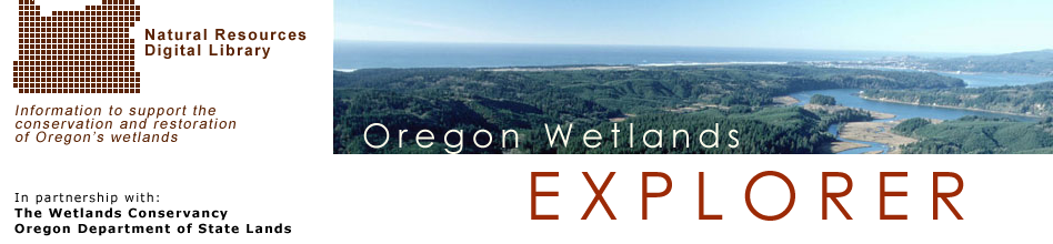 Wetlands Explorer: Banner Image