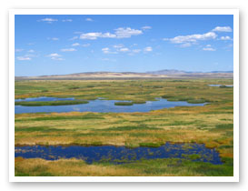 Malheur County Buena Vista Pond