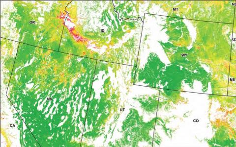 Screenshot of MLRC shrubland vegetation map