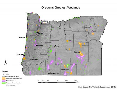Oregons Greatest Wetlands oregonexplorer Oregon State University