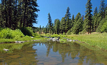 Crooked River, Oregon State Archives