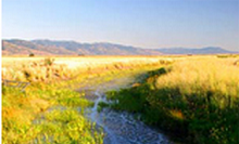 Lake County Marsh, Oregon State Archives