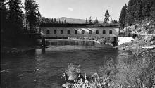 The Oregon Encyclopedia McKenzie River Oregonexplorer Oregon - Oregon encyclopedia